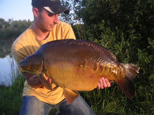 Carpissimo 2008