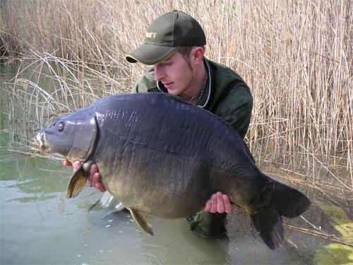 Carpissimo 2006